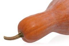 Zucca arancione Fotografia Stock Libera da Diritti