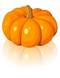 Zucca arancione. Illustrazione di vettore. Fotografia Stock