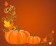 Zucca-autunno-scuro-ombra Fotografie Stock