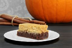 Zucca Brownie Cheesecake Bars Fotografia Stock