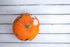 Zucca brutta con la putrefazione su fondo di legno bianco fotografia stock libera da diritti
