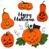 Zucca colorata per il vettore di Halloween illustrazione di stock