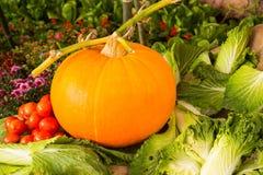 Zucca con il pomodoro ed il cavolo immagine stock libera da diritti