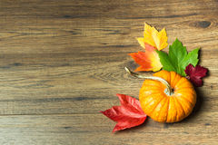 Zucca con le foglie di acero - Autumn Thanksgiving Background Fotografia Stock