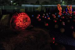 Zucca con luce alla notte Fotografie Stock Libere da Diritti