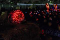 Zucca con luce alla notte Fotografia Stock Libera da Diritti