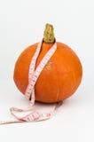 Zucca con nastro adesivo di misurazione Fotografia Stock