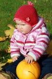 zucca del bambino Fotografia Stock Libera da Diritti