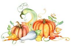 Zucca dell'acquerello e foglie di autunno Composizione nel raccolto Giorno felice di ringraziamento Illustrazione disegnata a man Immagine Stock Libera da Diritti