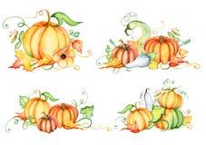 Zucca dell'acquerello e foglie di autunno Composizione nel raccolto Giorno felice di ringraziamento Illustrazione disegnata a man Fotografie Stock Libere da Diritti