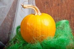 Zucca dell'arancia di Halloween Fotografie Stock Libere da Diritti