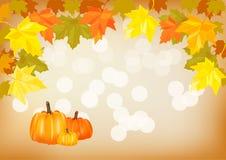 Zucca di autunno Immagini Stock