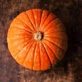 Zucca di autunno sopra la tavola di legno Immagini Stock Libere da Diritti