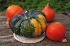 Zucca di ghianda e zucche arancioni dell'Hokkaido immagini stock