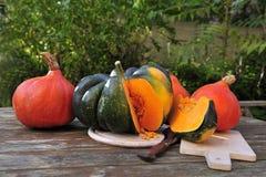 Zucca di ghianda e zucche arancioni dell'Hokkaido fotografie stock libere da diritti