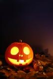 Zucca di Halloween Fotografie Stock