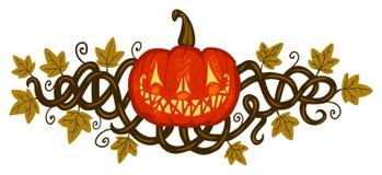 Zucca di Halloween Immagine Stock