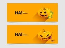 Zucca di Halloween con i fiori di autunno Fotografia Stock Libera da Diritti