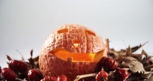 Zucca di Halloween con la foglia di acero contro fondo bianco 4k archivi video