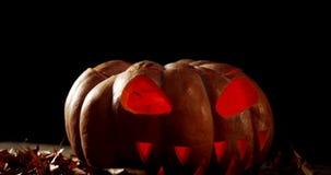 Zucca di Halloween con la foglia di acero contro fondo nero 4k stock footage