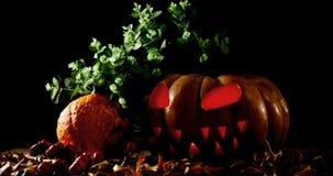 Zucca di Halloween con la foglia di acero contro fondo nero 4k archivi video