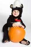 Zucca di Halloween del bambino Immagine Stock