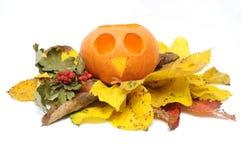 Zucca di Halloween e fogli di autunno. Fotografia Stock Libera da Diritti