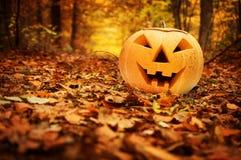 Zucca di Halloween. Foresta di autunno Immagini Stock