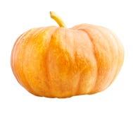Zucca di Halloween isolata Fotografie Stock