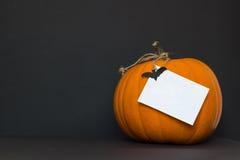 Zucca di Halloween su una priorità bassa nera Fotografia Stock