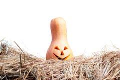 Zucca di Halloween sul fieno su un fondo bianco isolato Immagine Stock Libera da Diritti