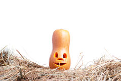 Zucca di Halloween sul fieno su un fondo bianco isolato Immagine Stock