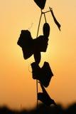 Zucca di Lvy dopo il tramonto Immagini Stock
