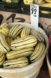 Zucca di patate dolci Fotografie Stock Libere da Diritti