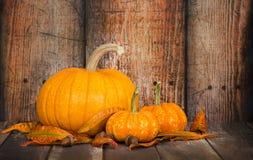 Zucca di Sugar Pie e mini zucche contro backgr di legno rustico Fotografie Stock