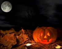 Zucca e Halloween Immagine Stock