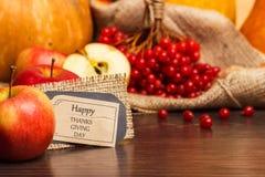 Zucca e mela di giorno di ringraziamento Immagini Stock Libere da Diritti