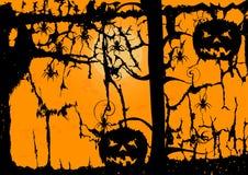 Zucca e ragno del fantasma su fondo arancio Fotografia Stock Libera da Diritti