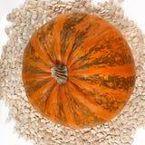 Zucca e semi di zucca Fotografia Stock Libera da Diritti
