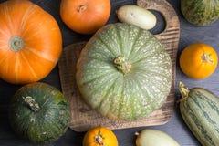 Zucca e zucchini Fotografia Stock Libera da Diritti
