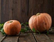 Zucca ed edera sulla tavola di legno scura Halloween Immagine Stock