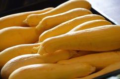 Zucca gialla Immagine Stock Libera da Diritti