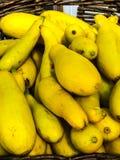 Zucca gialla Immagini Stock