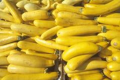 Zucca gialla ad un mercato degli agricoltori Immagine Stock