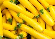 Zucca gialla fresca su visualizzazione Immagini Stock Libere da Diritti
