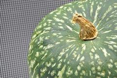 Zucca giapponese a macroistruzione Immagini Stock Libere da Diritti