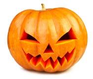 Zucca Halloween Fotografia Stock Libera da Diritti