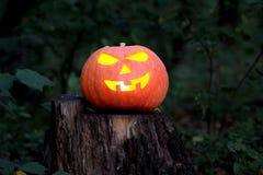 Zucca intagliata di Halloween Fotografia Stock Libera da Diritti