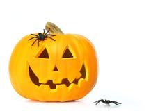 Zucca intagliata di Halloween con i ragni Fotografia Stock