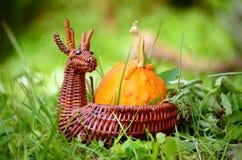 Zucca nel canestro decorativo dei cervi Fotografie Stock